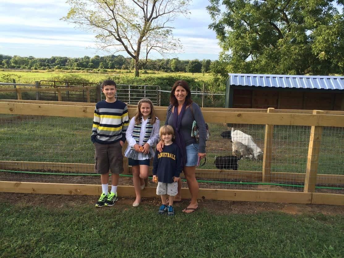 Family in Animal Farm